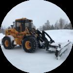 l9 snöblad